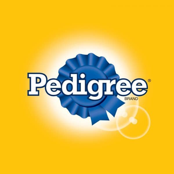 Pedigree : Brand Short Description Type Here.